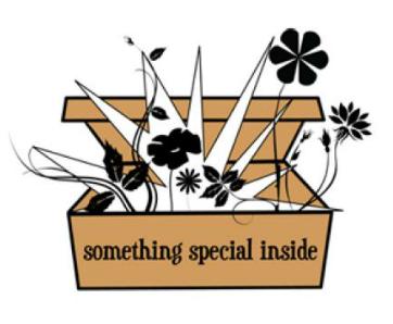Something Special Inside – Logo Design
